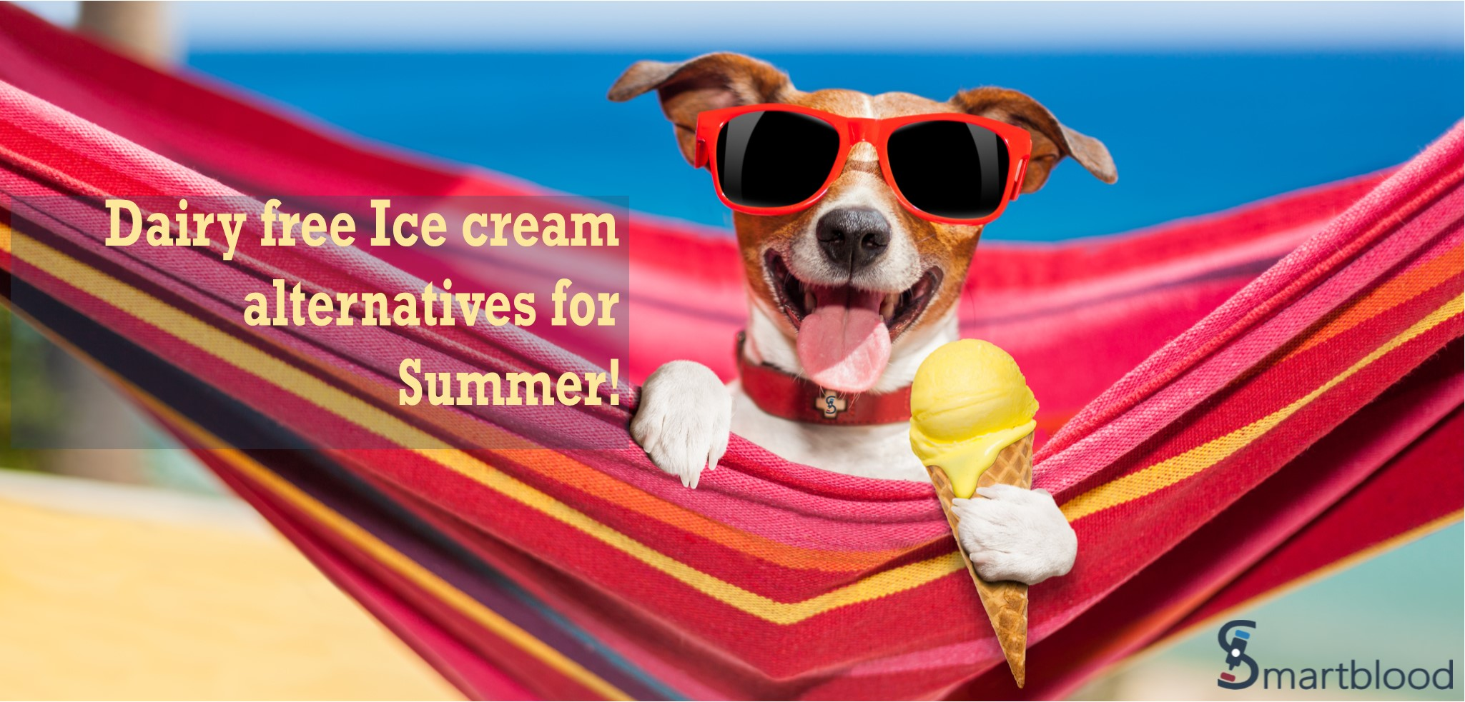 Dairy Free Ice Cream Alternatives for Summer